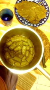 Stuffed Grape Leaves- in pot